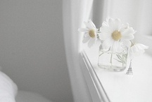 White obsession / by Elisabeth Romano