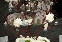 Flowers / by Andrea Malnar