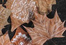 Fall. / by Jen Anderson