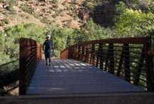 Bridges. / by Jen Anderson
