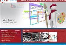 Web tasarımda neler yapılabilir / Web sitesi hakkında bilmeniz gerekenleri açıklamak istiyoruz.
