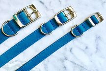 Dog Collars / Dog collars for your four legged babe