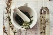 Herbal Medicine / Recipes and products that use the power of plants and natural ingredients to heal and promote health