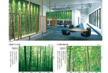 Top floor bathroom / Note: Very bright lighting Hiro to confirm clear PVC covering of tree wall paper / by Inga Parsons