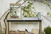Растения в доме / Предлагаем решения даже для зимнего варианта. Кашпо, теплицы и оранжереи, вместе с чашами и вазами, в самых интересных дизайнерских разработках.