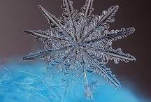 Winter / A tél