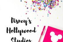 Disney's Hollywood Studios / Everything you need to know about Disney's Hollywood Studios! (Previously MGM Studios)