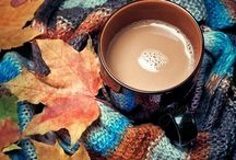Winter and Fall Activities