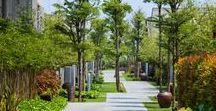 Public green