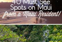 Maui Hawaii / Tripping to Maui later this year, ideas and recommendations
