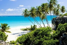 Barbados Beaches: The Caribbean's Best / Barbados beaches are some of the best in the Caribbean! Explore the tranquil west coast beaches, the lively south coast Barbados beaches and the rugged east and northern coasts of Barbados. http://barbados.org/beaches.htm