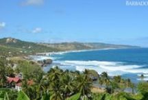 Barbados Natural Attractions / Reconnect with nature and rejuvenate your soul as you explore the natural beauty of Barbados, a tropical island filled with lush gullies, colourful flora, wondrous underground caves, beautiful beaches and scenic lookouts.