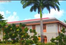 World Heritage Site: Historic Bridgetown and Its Garrison, Barbados / Barbados' capital city - Bridgetown - and its historic Garrison are a UNESCO World Heritage Site. Come and explore how historic buildings blend with modern amenities...
