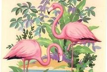 Tropical Candy & Pink Flamingos / mood board about tropical pretty things & places