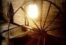 Spinning Wheels / by Denita Graham