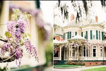 Wedding Destinations / by Holly Rouse | Oh Golly, Holly!