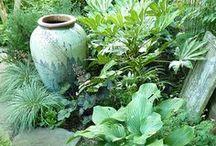 Gardening / by Annalia Romero