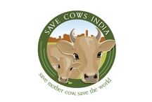 Save cows / Various initiatives taken towards saving cows and bulls from being slaughtered.