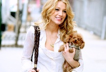 Poodle glam / Poodles are one of the most athletic breeds of dogs in the world, and also icons of chic since Hollywood's original glam days. Here are some of our favorite glamorous poodles and their humans.