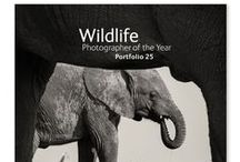 NHM Shop - WPY / Wildlife Photographer of the Year 2014 merchandise. For news about our latest products and competitions, visit http://www.nhmshop.co.uk or follow @Shop_at_NHM on Twitter.  / by Natural History Museum, London