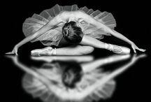 La Prima Ballerina / They embody grace, agility, determination, and perseverance...