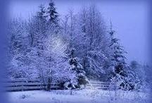 Winter ... A Frozen World