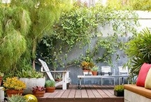 backyard inspiration / Ideas for redoing our dirt pile of a backyard.  Taking into consideration a GIANT tree, 2 doggies and a behemoth picnic table.  Also fire pit and faerie lights;)