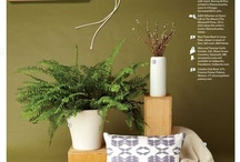 Press- Design New England / Honored to participate in Design New England's gift selection guide for the Nov/Dec issue.