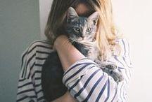 Cat Lovers