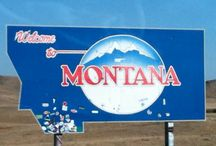50 STATES: Montana / by Lateefah Brown