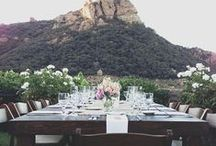 Wedding / by Meredith Couture