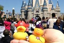 Disneyland 1955-Present 2 / Opening Day July 17, 1955 / by Judy Warner
