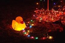 Creative Christmas Lighting / by Judy Warner