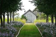 HOME  |gardening| / Gardening / by Heddy Herron