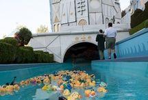 Disneyland 1955-Present 1 / by Judy Warner