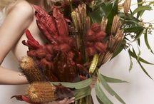 ★ bouquets. plants ★