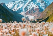 t mountains