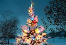 Season - Christmas Decor / I love Christmas, the decorations, the time spent with family and friends, the joy and excitement of the children.  / by Ricki @ The Questionable Homesteader