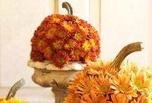 Season - Fall Decor / by Ricki @ The Q Homesteader