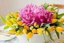 Gardening, landscaping & outdoor loveliness / by Winnie Milner