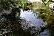Zahrady - voda