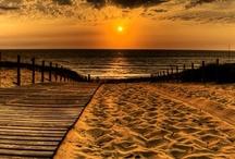 Boardwalks / by Robin Adams