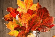 Fall (in love) ♥