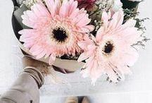 Floral flourish flowers