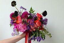 FLORAL: bouquets & posies