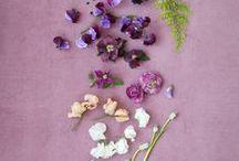 FLORAL: petal & blossom