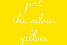 yellowism / by imp 125