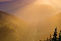 The Splendor Of Sunshine / by Ree Ann Stepp