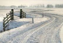 White winter / by Andrea Mackova