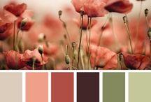 Pick a color!